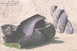 八木マリヨ展